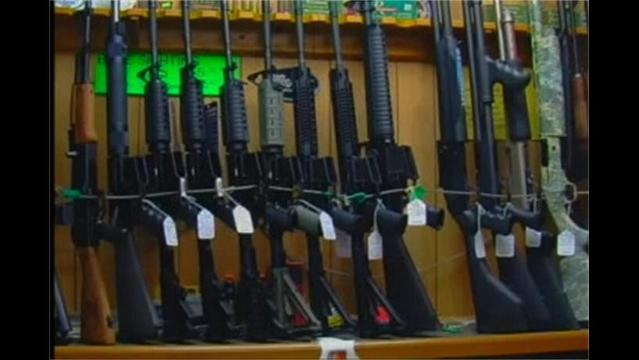 Rifle of School Shooting Widely Sold in Stores