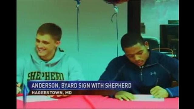 Pair Of Hubs Sign with Shepherd