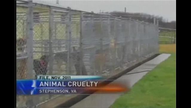 VA Pet Kennel Charged with 13 Counts of Animal Cruelty