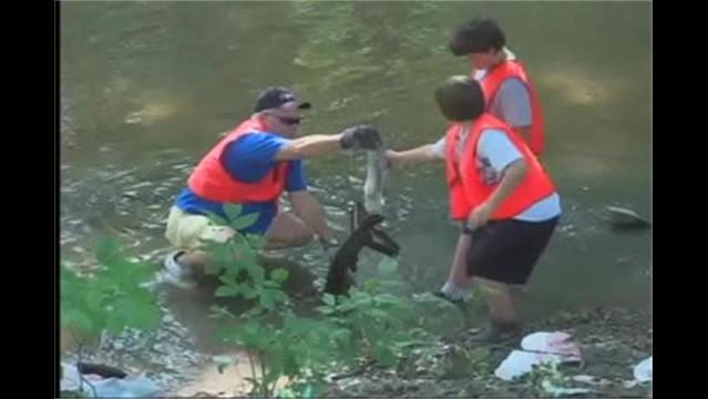 Volunteers Clean-Up Local Creeks