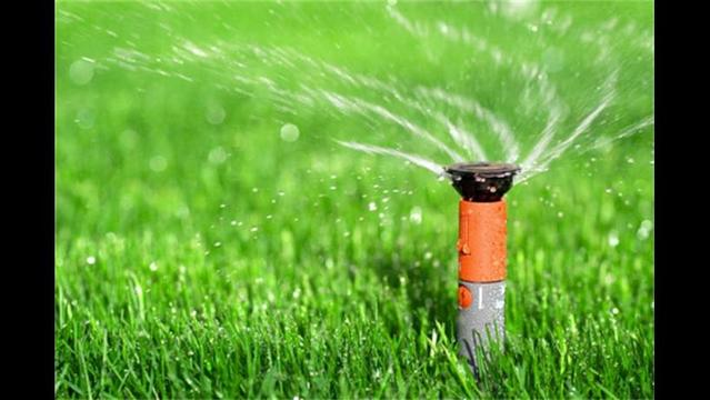 Thirsty front lawn? Get smart about conserving water outdoors