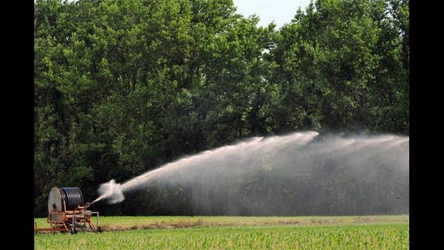 U of Florida web tool measures farms' water footprint