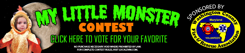 Vote for your favorite My Little Monster Costume on Local DVM dot com