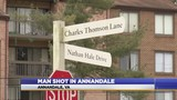 Police investigating shooting in Annandale